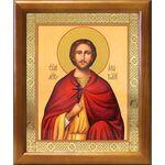 Мученик Анатолий Никейский, икона в рамке 17,5*20,5 см - Иконы