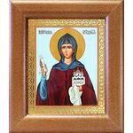 Преподобная София Суздальская, икона в широкой рамке 14,5*16,5 см - Иконы