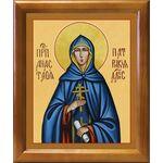 Преподобная Анастасия Патрикия, Александрийская, рамка 17,5*20,5 см - Иконы