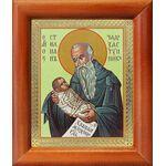 Преподобный Стилиан Пафлагонский, Чадозаступник, рамка 8*9,5 см - Иконы