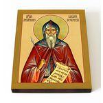 Преподобномученик Василий Печерский, икона на доске 13*16,5 см - Иконы