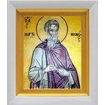 Преподобный Мартиниан Кесарийский, икона в белом киоте 14*16 см - Иконы