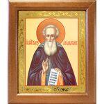 Преподобный Александр Свирский, икона в широкой рамке 19*22,5 см - Иконы