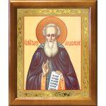 Преподобный Александр Свирский, икона в деревянной рамке 17,5*20,5 см - Иконы