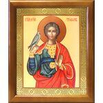 Мученик Трифон Апамейский, икона в рамке 17,5*20,5 см - Иконы