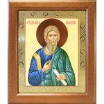 Апостол Андрей Первозванный, широкая рамка 19*22,5 см - Иконы