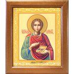 Великомученик и целитель Пантелеимон, широкая рамка 19*22,5 см - Иконы