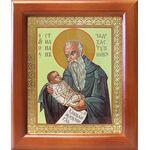 Преподобный Стилиан Пафлагонский, Чадозаступник, рамка 12,5*14,5 см - Иконы