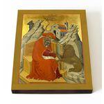Преподобный Иероним Блаженный, Стридонский, печать на доске 13*16,5 см - Иконы