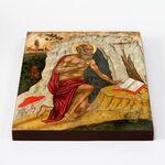 Преподобный Иероним Блаженный, Стридонский, икона на доске 20*25 см - Иконы