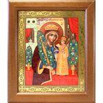 """Икона Божией Матери """"Неувядаемый Цвет"""", в широкой рамке 19*22,5 см - Иконы"""
