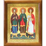 Мученики и исповедники Гурий, Самон и Авив, икона в рамке 17,5*20,5 см - Иконы
