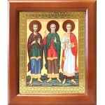 Мученики и исповедники Гурий, Самон и Авив, рамка 12,5*14,5 см - Иконы