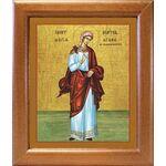 Мученица Агафия Панормская, икона в широкой рамке 19*22,5 см - Иконы