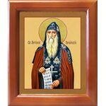 Преподобный Антоний Печерский, икона в рамке 12,5*14,5 см - Иконы