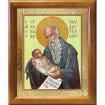 Преподобный Стилиан Пафлагонский, икона в рамке 17,5*20,5 см - Иконы