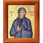 Праведная Елисавета, мать Иоанна Крестителя, икона в рамке 8*9,5 см - Иконы