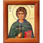 Преподобный Иоанн Кущник, икона в рамке 8*9,5 см - Иконы