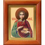 Великомученик и целитель Пантелеимон, рамка 8х9,5 см - Иконы