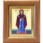 """Икона Божией Матери """"Нерушимая Стена"""", в широкой рамке 14,5*16,5 см - Иконы"""