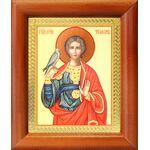 Мученик Трифон Апамейский, икона в деревянной рамке 8*9,5 см - Иконы