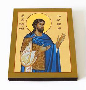 Мученик Тимофей Палестинский, икона на доске 8*10 см - Иконы