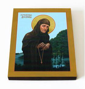 Преподобная Досифея Киевская, затворница, икона на доске 8*10 см - Иконы