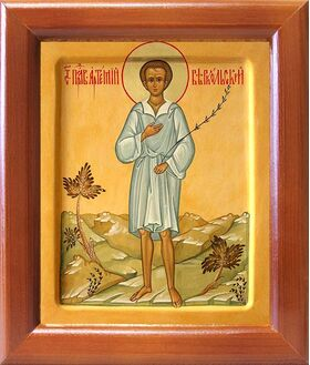 Праведный Артемий Веркольский, отрок, икона в рамке 12,5*14,5 см - Иконы